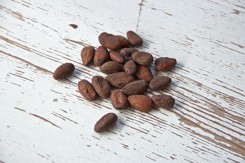K čemu všemu slouží kakaové boby